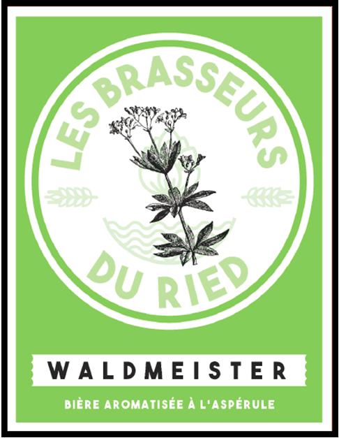 Waldmeister aspérule odorante
